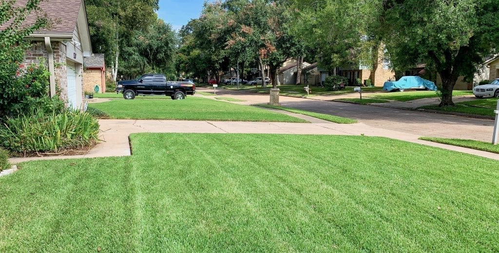 Best lawn care company in Houston, Texas
