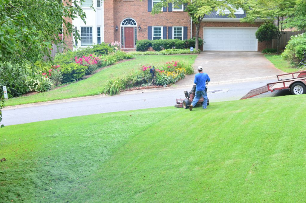 Man mowing the lawn low before fall